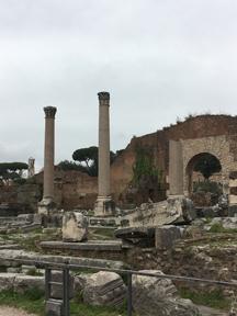 forum area6