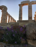 temple of poseidon8